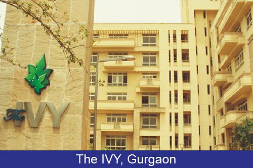 The Ivy Gurgaon
